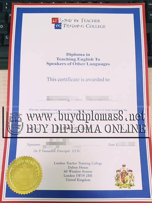 certificate tesol diplomas fake