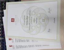 fake Temasek Polytechnic degree, fake Temasek Polytechnic transcript,