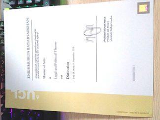 UCL degree, UCL diploma, University college London diploma,