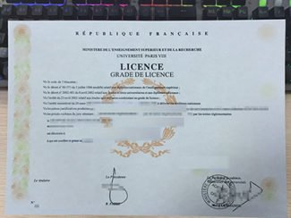 Université Paris VIII licence, Université Paris VIII diploma,