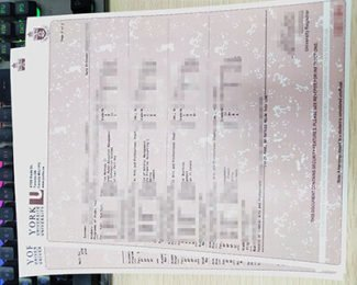 York University transcript, York University diploma, fake Canada transcript