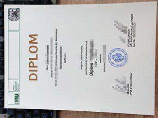 LMU Munich diploma, Ludwig-Maximilians-Universitat München diploma, fake German diploma,