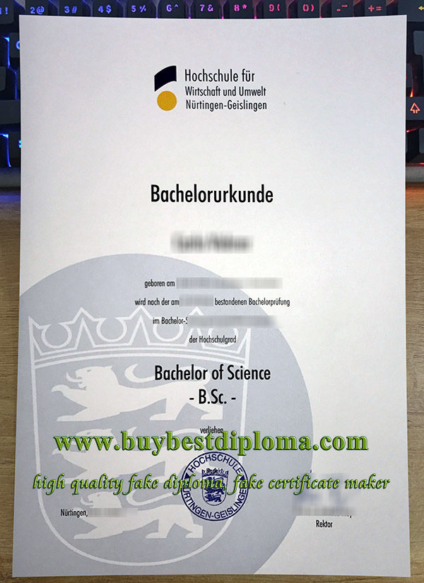 HfWU Hochschule certificate, fake HfWU urkunde, University of Nürtingen-Geislingen diploma,