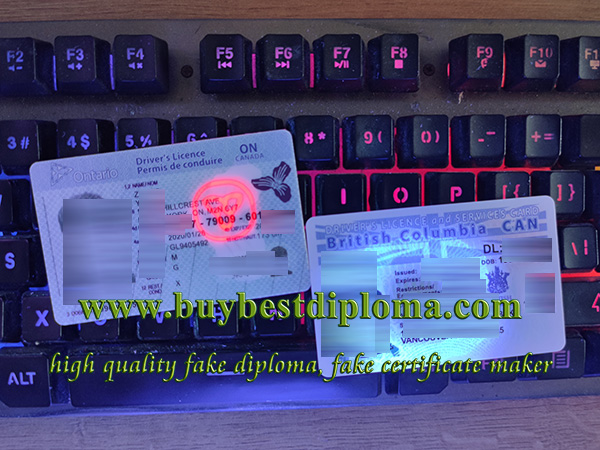 Canada driver's licence, Canada Driving license, Ontario driver's lincence, British Columbia driver's licence, 加拿大驾照,