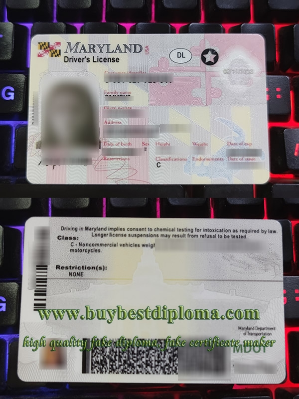 Maryland driver's license, Maryland driver license, fake Maryland driving card, fake USA driver license,