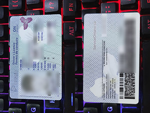 Ontario driver's licence, buy Ontario driver licence, buy Canada driver licence,