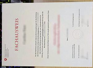 Schweizerische Eidgenossenschaft diploma, Schweizerische Eidgenossenschaft certificate, Schweizerische Eidgenossenschaft fachausweis,